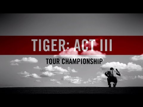 Act III, Part 14: Tiger Woods  …