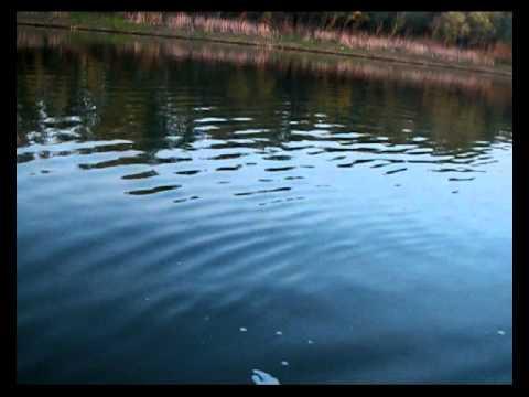 selo-obuhovo-ivankovskoe-vodohranilishe-video