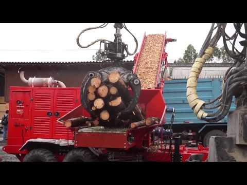 Picador de Madeira Florestal RAPTOR 900 - Trabalhando picando Pinus