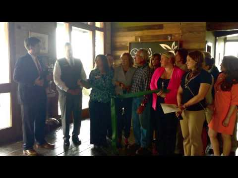 Carolina Vine & Branch Ribbon Cutting
