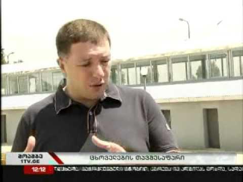 თბილისში უპატრონო ცხოველების თავშესაფარი გაიხსნა
