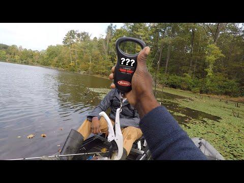 LITTLE POND BIG FISH !!! QUALITY OVER QUANTITY (GIVEAWAY) видео