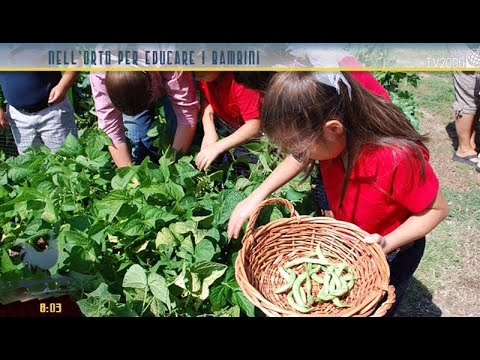 come coltivare l'orto con i bambini