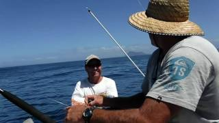 Tutukaka New Zealand  city images : gamefishing marlin mahimahi tuna tutukaka new zealand movie 1