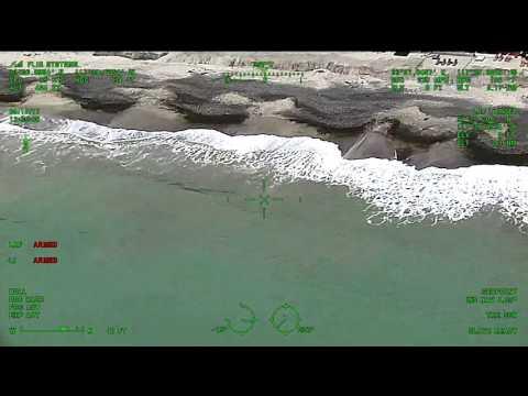 24条大白鲨出没·南加州海滩关闭 ...