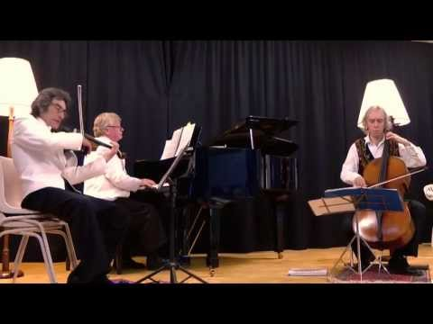 Pachelbel Canon (Blue Mountains Trio)