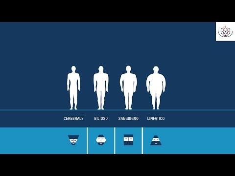 quali sono i 4 psico-biotipi morfologici?