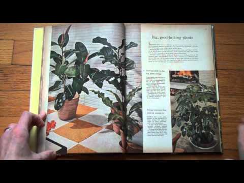 Presenting Houseplants (Better Homes & Gardens 1959)