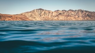 We spent almost a week parked at the gorgeous beach of La Gringa, in Bahia de los Angeles, Baja California. There time seems...