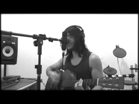 Luiz Magnago - Queens of The Stone Age -  The Sky is Falling (Acoustic Cover) (видео)