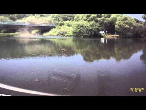 Полет микроавтобуса сквозь перила с моста в реку! ВИДЕО