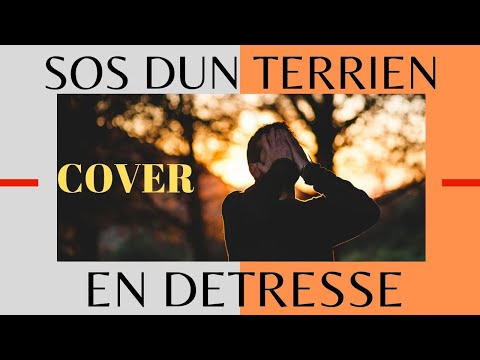 SOS dun terrien en detresse  (cover)