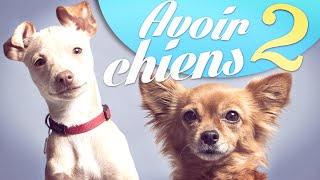 Video Avoir 2 chiens - Natoo MP3, 3GP, MP4, WEBM, AVI, FLV Agustus 2017