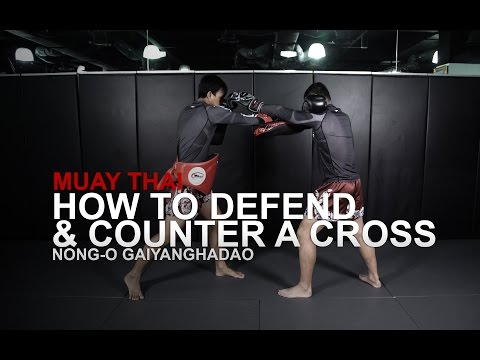 Muay Thai: 5 Ways To Defend And Counter A Cross   Evolve University