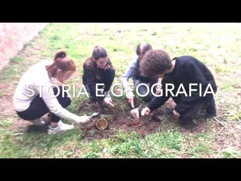Istituto Carducci Volterra - indirizzo Liceo Classico