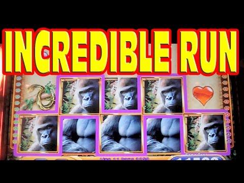 Queen of the Wild INCREDIBLE SLOT MACHINE RUN Bonus! Retrigger! Line Hits! Progressives!  HUGE WIN