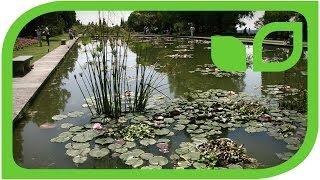 Der Parco Sigurta am Gardasee (Impressionen)