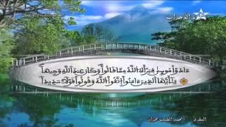 المصحف المرتل الحزب 43 للمقرئ محمد الطيب حمدان HD