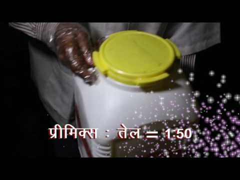 Oil Fortification Film Video