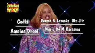 Amina Dhool  New Song 2012