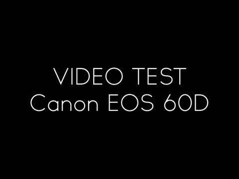 Video Test Canon 60D With Sigma 50mm 2.8 MACRO