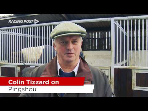 Cheltenham Stable Tour: Colin Tizzard On His Hurdlers