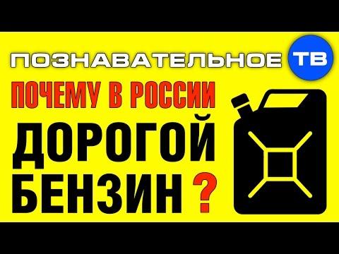 Почему в России дорогой бензин (Познавательное ТВ Артём Войтенков) - DomaVideo.Ru