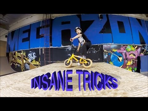 INSANE 7 YEAR OLD MINI BMX TRICKS (видео)
