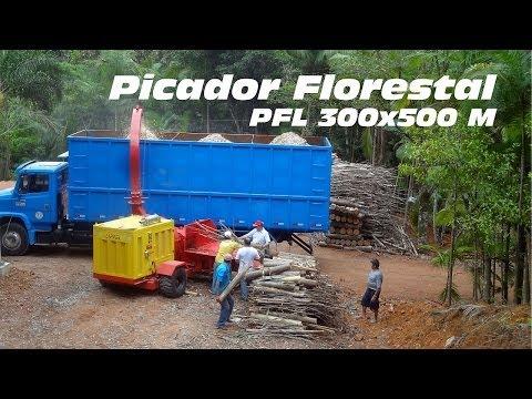 Picador Florestal PFL 300 x 500M - triturando troncos e galhos de eucalipto
