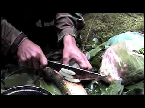 hmong nplog -yos hav zoov 3