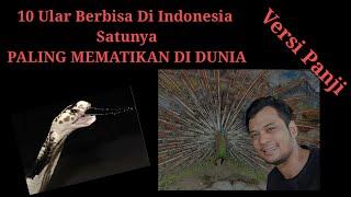 Video 10 ULAR BERBISA DI INDONESIA, NO 1 PALING BERBISA DI DUNIA! MP3, 3GP, MP4, WEBM, AVI, FLV Desember 2018