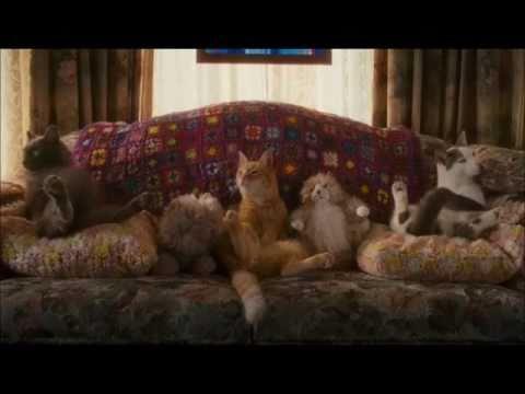 Catnip Scene (Cats and Dogs II - Revenge of Kitty Galore)
