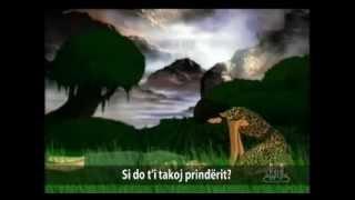 Habili Dhe Kabili - Film Vizatimor | SHQIP