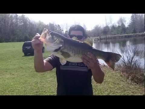 8 and 6 pound bass!