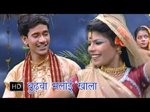 Video Budhwa Malai Khai | बुढ़वा मलाई खाई | Dinesh Lal Yadav  | Bhojpuri Hot Songs download in MP3, 3GP, MP4, WEBM, AVI, FLV January 2017