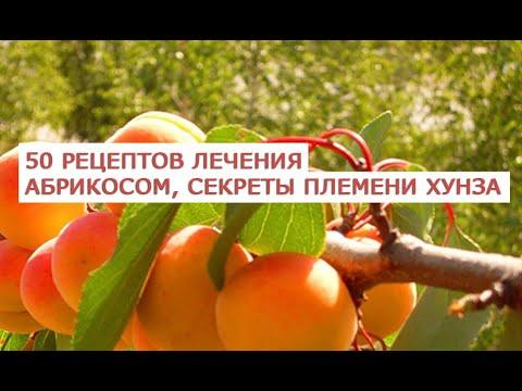 50 рецептов лечения абрикосом, лекарство от рака, которое мы выбрасываем, секреты племени Хунза, зап