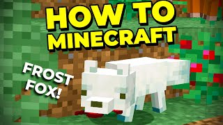Finding New Biomes With Elytra + Frost Fox!! - How to Minecraft #22