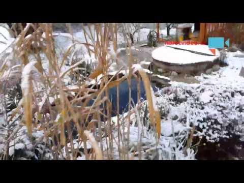 Zasněžené zahradní jezírko s potůčkem