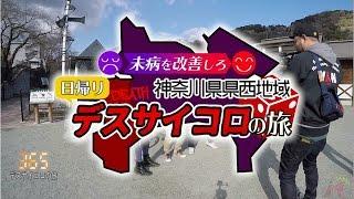 未病を改善しろ 神奈川県県西地域 日帰りデスサイコロの旅