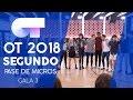 GRUPAL   Segundo pase de micros Gala 3   OT 2018