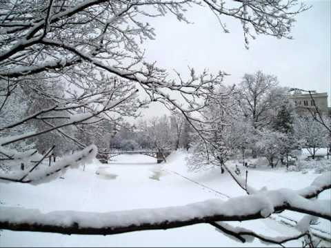 Suzi Snowflake by The Jason Dixon Line.wmv
