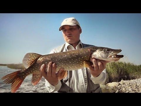 рыбалка в уральске битикское водохранилище