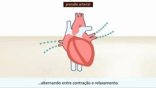 Excelente coletânea de vídeos sobre saúde do portal TV Saúde.