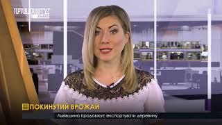 Випуск новин на ПравдаТУТ Львів 16.10.2018
