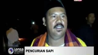 PENCURI SAPI TEWAS DIHAKIMI WARGA [ LENSA INDONESIA MALAM RTV 1 JUNI 2017 ]