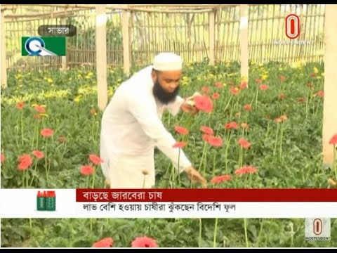 Foreign flower cultivation (11-09-2019) Courtesy: Independent TV