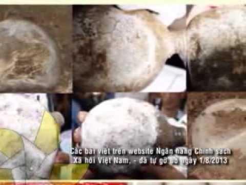 Lừa đảo chôn xương vụn và xương động vật giả làm hài cốt liệt sĩ