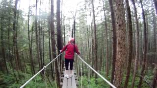 Nonton Ziplining In Juneau Alaska Rain Forest Canopy 2013 Film Subtitle Indonesia Streaming Movie Download