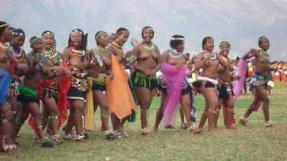 Reed Dance Ceremony 2009 in Swaziland.