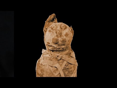 Still image from Egypt: Ancient Egyptian Mummies Get Cat Scanned